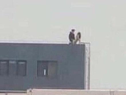 Cư dân mạng xôn xao kinh ngạc với bức ảnh cặp đôi hồn nhiên 'làm chuyện ấy' trên sân thượng tòa nhà