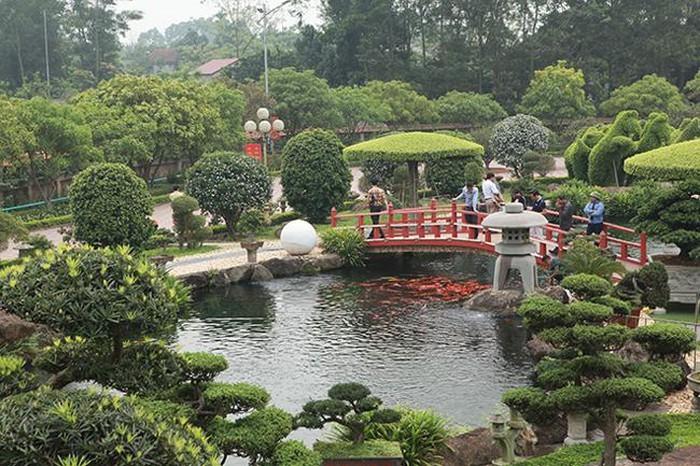 Khu vườn Nhật và đàn cá Koi 10 tỷ của đại gia Thái Nguyên-1