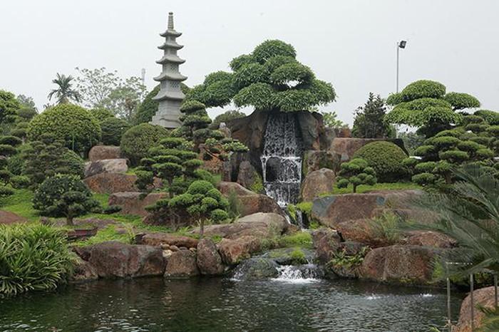 Khu vườn Nhật và đàn cá Koi 10 tỷ của đại gia Thái Nguyên-7