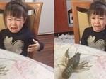 Bức ảnh gây lú lẫn hết hồn: Em bé chỉ có đầu và chân hút 65.000 like chỉ trong 1 giờ, khiến dân mạng cười nghiêng ngả-2