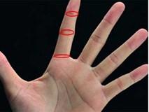 6 dấu hiệu 'TƯỚNG HỌC' chỉ xuất hiện ở bàn tay người phụ nữ mang MỆNH PHƯỢNG HOÀNG, không giàu sang cũng phú quý
