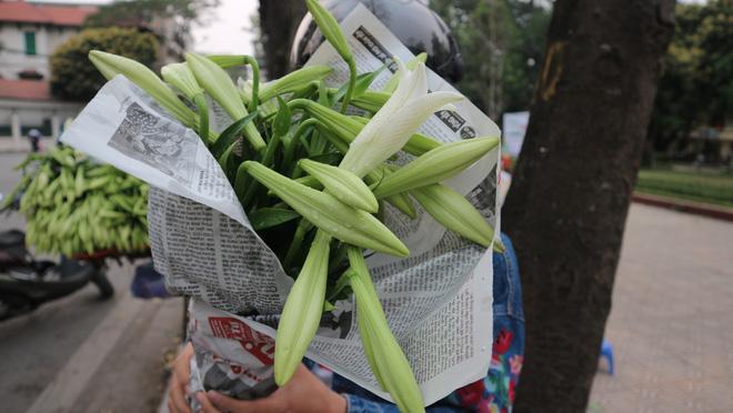 Loài hoa hái ra tiền bỗng dưng mất tích ở thủ phủ hoa Tây Tựu?-10