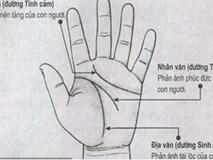 Xem đường trí tuệ và tình cảm trên bàn tay có dấu hiệu này thì CHỚ DẠI kết hôn sớm mà khổ cả một đời