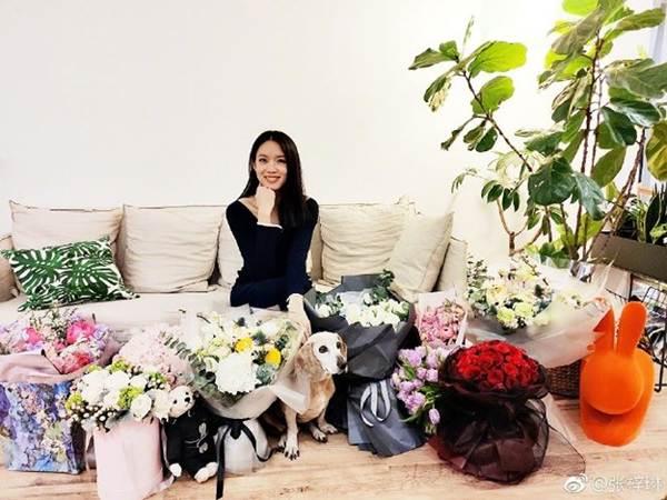 Hoa hậu thế giới Trương Tử Lâm xinh đẹp rạng ngời đón tuổi 35-3