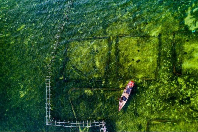 Việt Nam đẹp nghẹt thở qua ống kính nhiếp ảnh gia Mỹ-2