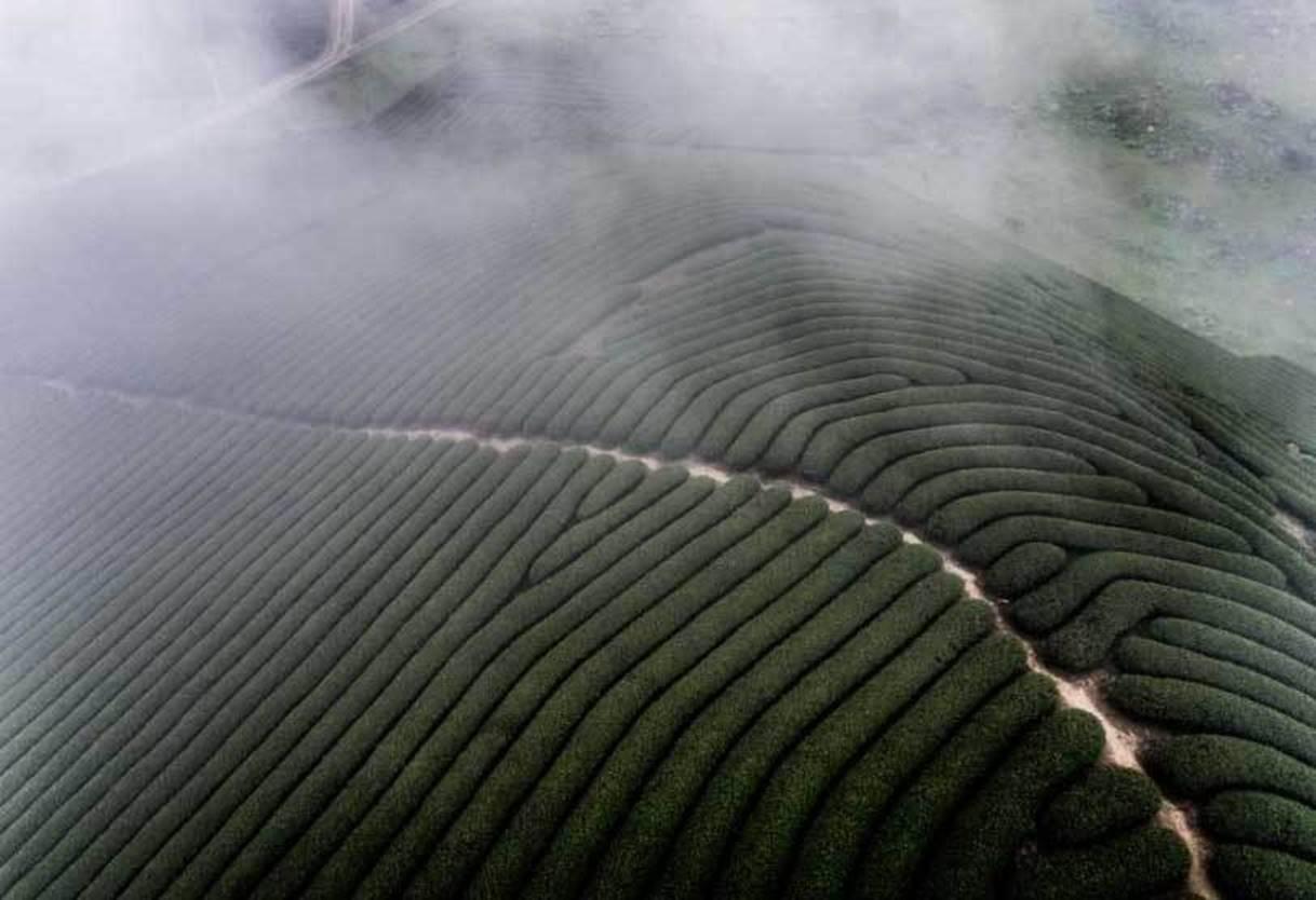 Việt Nam đẹp nghẹt thở qua ống kính nhiếp ảnh gia Mỹ-5