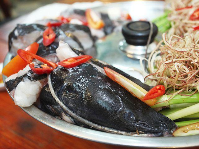 5 loài cá cực hiếm được ví là ngũ quý hà thủy, có tiền cũng khó mua-3