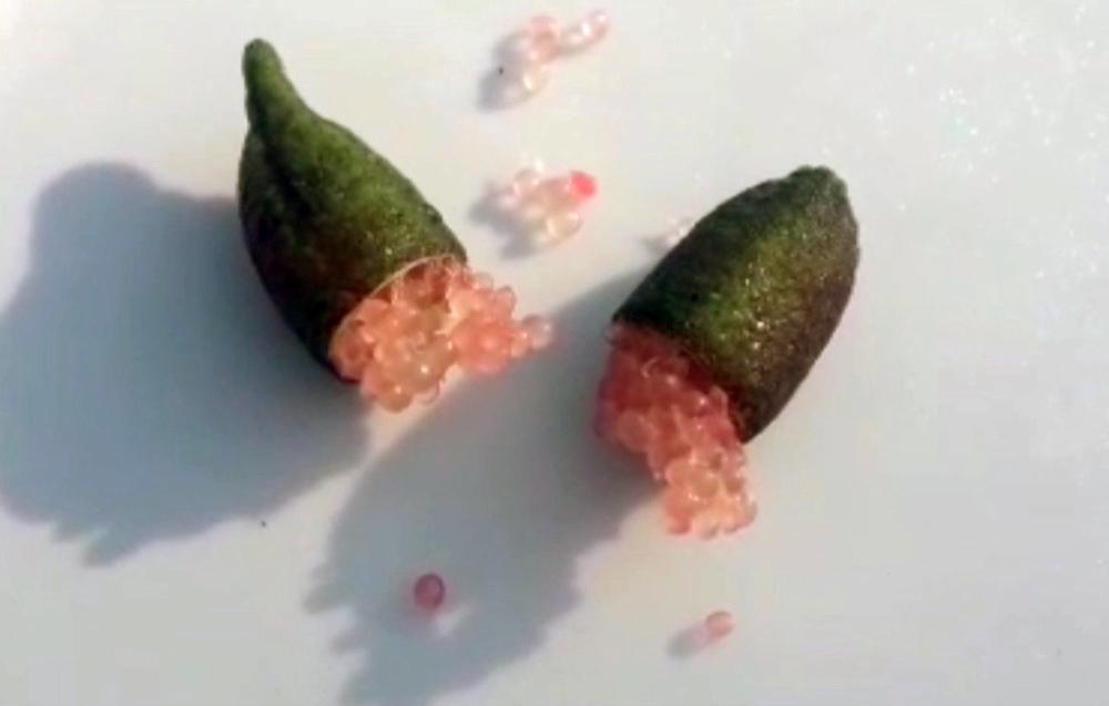 Quả chanh tý hon chứa cả ngàn hạt trứng cá long lanh, giá đắt gấp 100 lần-5