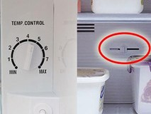 Tiền điện tăng chóng mặt, xem ngay chỗ này trên tủ lạnh để đỡ mất tiền oan