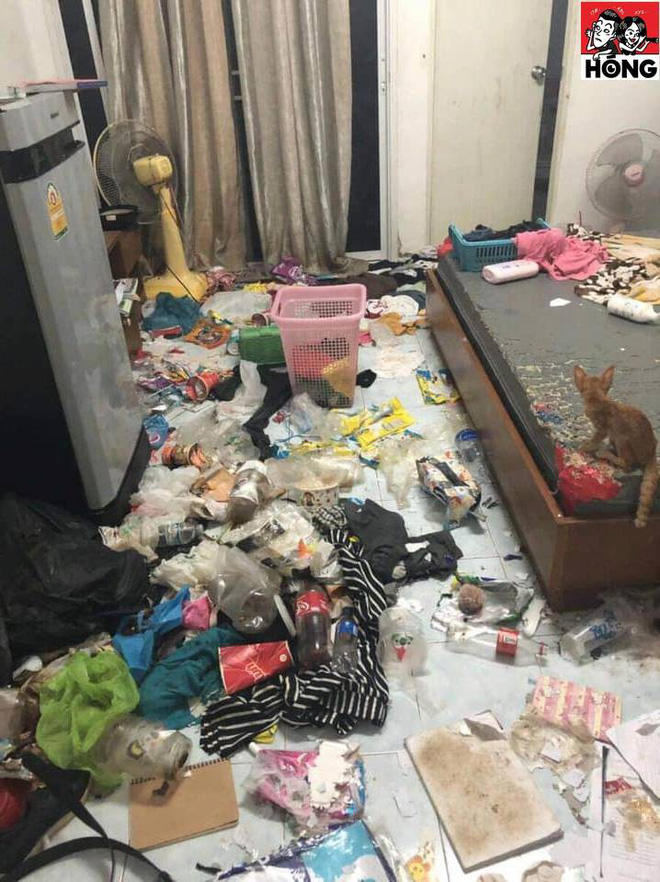 Cô gái bùng tiền nhà trọ, chủ nhà mở cửa phòng thì hoảng hốt vì khung cảnh trước mặt-5