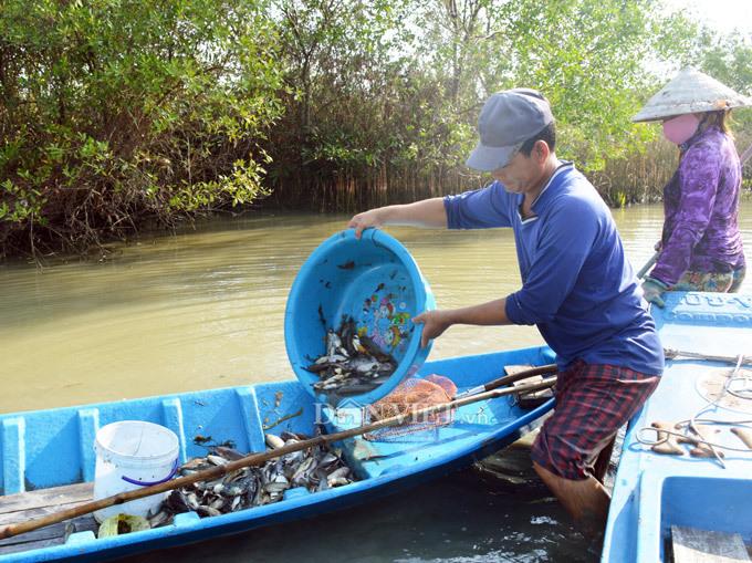 Cây bí ẩn, thả xuống nước hàng trăm kg cá trúng thuốc tha hồ vớt-10