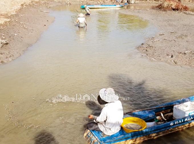 Cây bí ẩn, thả xuống nước hàng trăm kg cá trúng thuốc tha hồ vớt-2