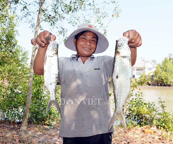 Cây bí ẩn, thả xuống nước hàng trăm kg cá trúng thuốc tha hồ vớt-5