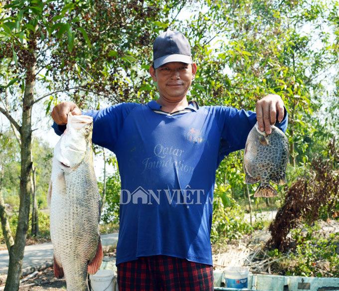 Cây bí ẩn, thả xuống nước hàng trăm kg cá trúng thuốc tha hồ vớt-7