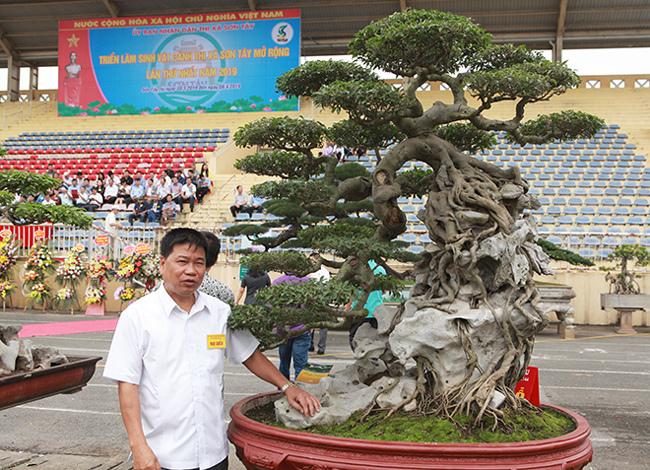 Kiệt tác sanh cổ thác đổ ngồi đá hiếm có của đại gia Phú Thọ-3