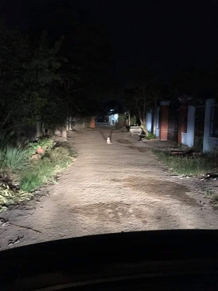 Lái xe đi đêm gặp em bé khóc giữa đường, cộng đồng mạng đồng loạt can ngăn: Đừng giúp!-2