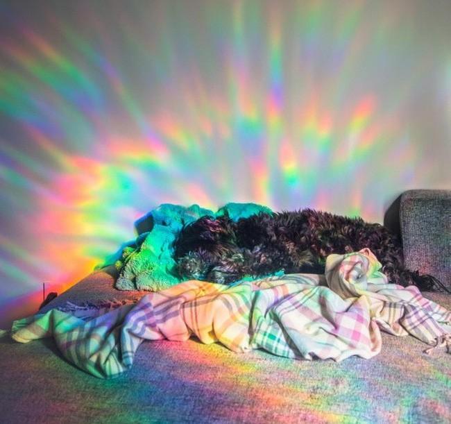 Chùm ảnh thật giả lẫn lộn khiến người xem phải vắt óc suy nghĩ để phân biệt, khuyến cáo không nên xem lúc buồn ngủ-15