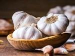 Tỏi mọc mầm: Thần dược cho sức khoẻ hay thuốc độc?-4