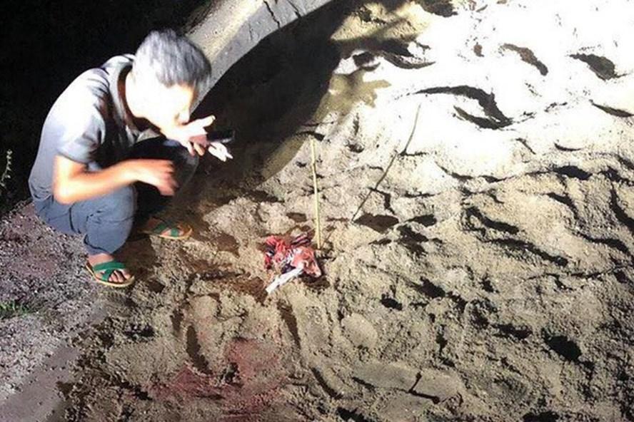 Đàn chó 10 con lao vào cắn chết bé trai 7 tuổi ở Hưng Yên-2
