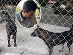 Chủ đàn chó cắn bé trai 7 tuổi tử vong: Nuôi chó để vui cửa vui nhà, sự việc xảy ra tôi cũng ân hận lắm-6