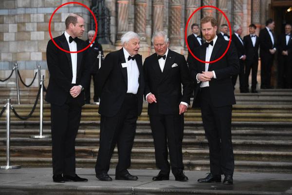 Hoàng tử William và Harry lộ bằng chứng rạn nứt, xa cách nhau, người dính nghi án ngoại tình, người thì mang tiếng sợ vợ-1