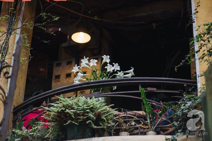 Tháng 4 về, Hà Nội lại dịu dàng những gánh loa kèn trắng tinh khôi, thơm nồng nàn khắp các góc phố-1