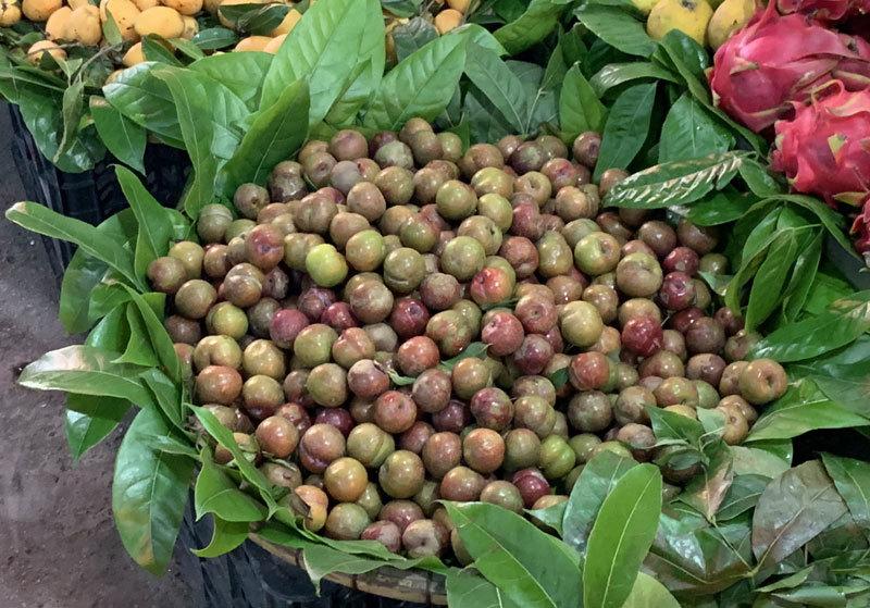Đắt gấp đôi hàng ngoại, mận Việt chua chát 300 ngàn/kg cháy hàng-1