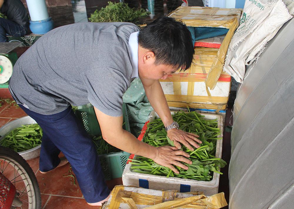 Cặp vợ chồng 20 năm giữa đảo hoang, mỗi ngày 2 tạ rau bí bán khắp Hà Nội-7