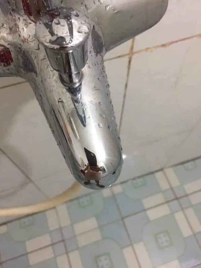 Chồng bảo đi sửa ống nước còn nhiệt tình chụp ảnh làm bằng chứng, nhưng vợ nổ đom đóm mắt khi thấy cảnh tượng này-2