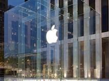 Bị rệp tấn công quá đông và hung hãn, Apple Store ở New York phải đóng cửa