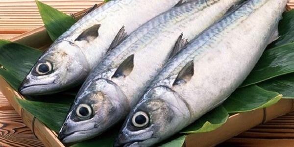 Ăn cá theo cách này nguy hiểm hơn uống thuốc độc-2