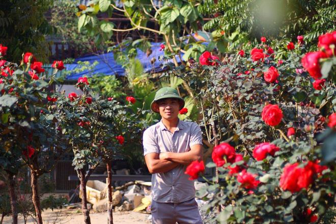 Bỏ ngân hàng đi trồng hoa, chàng trai gây dựng vườn hồng bạc tỷ-1