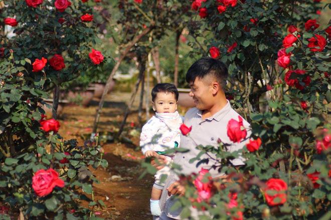 Bỏ ngân hàng đi trồng hoa, chàng trai gây dựng vườn hồng bạc tỷ-4