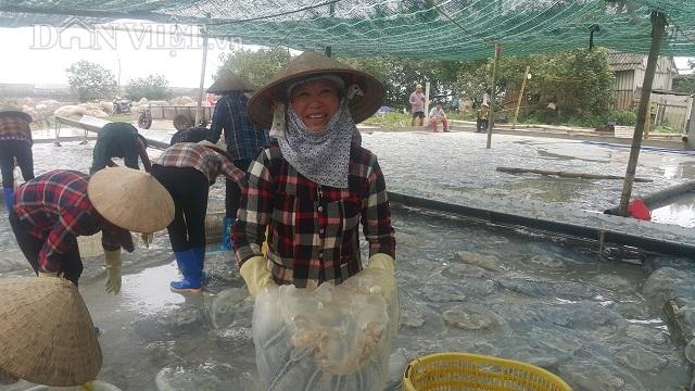 Nam Định: Săn vàng trắng nổi lập lờ bờ biển, kiếm chục triệu/ngày-7