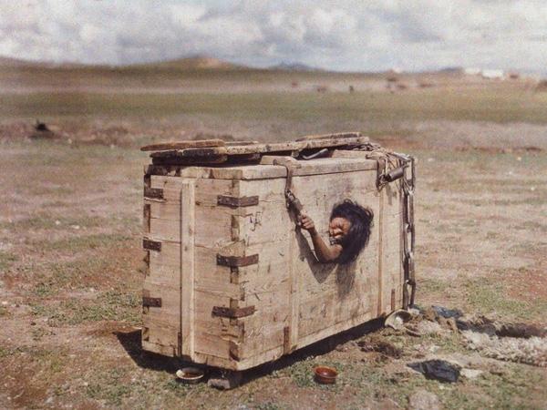 Người phụ nữ bị nhốt trong cũi giữa sa mạc đến chết vì đói khát và câu chuyện đầy ám ảnh sau bức ảnh khiến cả thế giới rùng mình-1