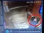 Không có mặt tại Đà Nẵng, Nguyễn Hữu Linh hiện ở đâu sau khi bị khởi tố vì nựng bé gái?-3