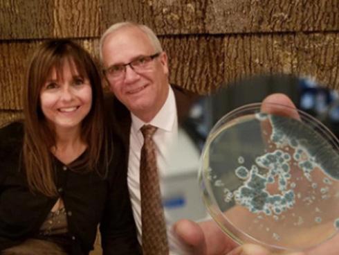 Cảnh báo: Đã có trường hợp tử vong do nhiễm chủng nấm mới siêu mạnh đang hoành hành khắp toàn cầu