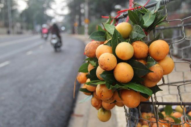 Ở đâu đổ vỏ chưa rõ chứ ở Việt Nam có 4 đặc sản làm từ vỏ bao ngon-7