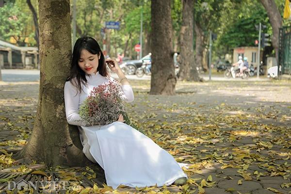 ẢNH: Mùa lá sấu nhuộm vàng trên con đường lãng mạn nhất Hà Nội-7