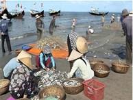 Nghỉ lễ 30/4: Một đêm săn tôm tít, ghẹ, ốc biển bỏ túi 2-4 triệu