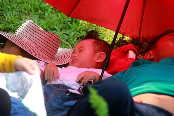 Thảo Cầm Viên vỡ trận, trẻ nhỏ gào khóc, ngồi gặm bánh mì chen chúc nhau giữa trời nắng 40 độ-17