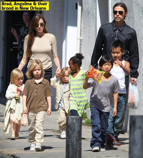 Hậu ly hôn, Angelina Jolie để lại tài sản trị giá 116 triệu đô cho người con trai nhận nuôi từ Campuchia?-2