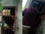 Cận cảnh chiếc chuồng của người bố nhốt con trai như vật nuôi, đầy ruồi muỗi và hôi thối được bạn bè giải cứu ở Hưng Yên-18
