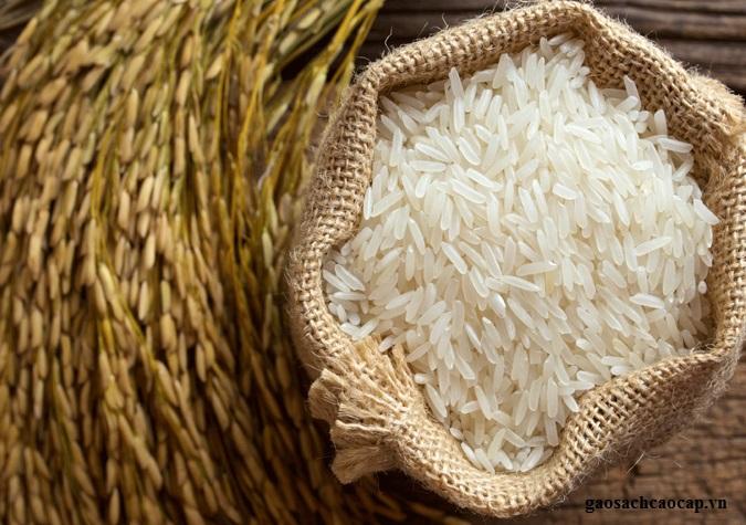 """Người bán gạo không bao giờ muốn bạn biết điều này: Cách nhận biết thật -giả để không bị lừa đảo""""-2"""