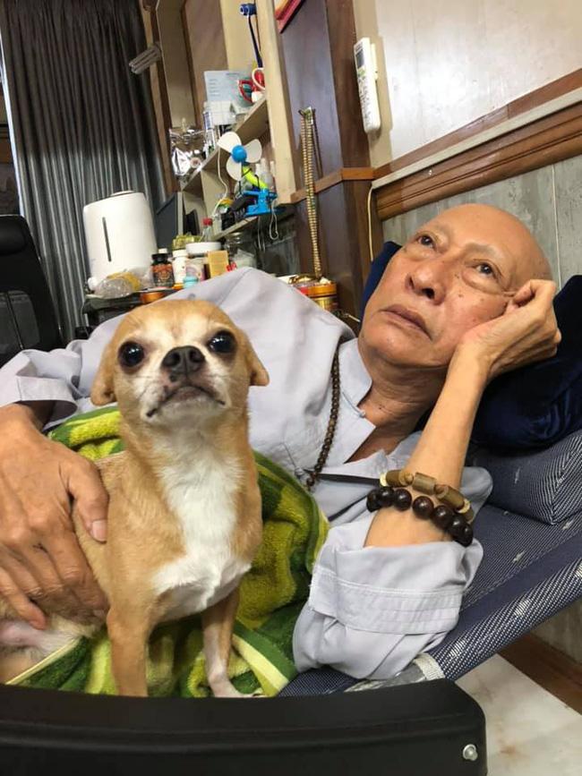 Rơi nước mắt với hình ảnh chú cún nhỏ buộc khăn tang trắng, quanh quẩn không rời bên linh cữu cố nghệ sĩ Lê Bình-11