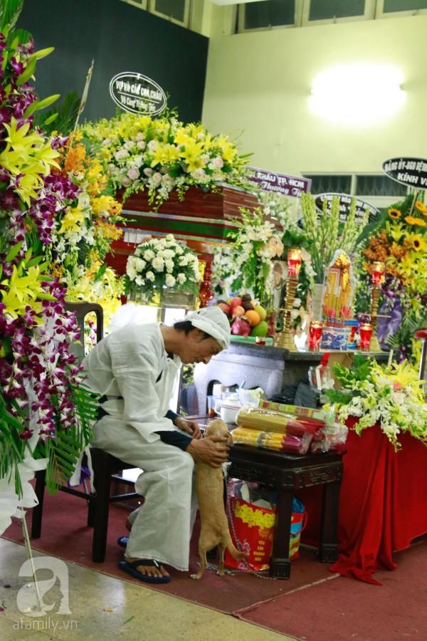 Rơi nước mắt với hình ảnh chú cún nhỏ buộc khăn tang trắng, quanh quẩn không rời bên linh cữu cố nghệ sĩ Lê Bình-6