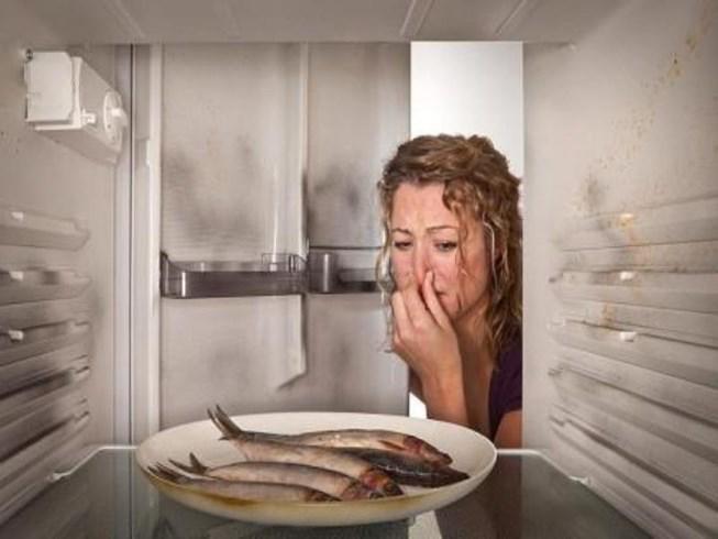 Bất ngờ cúp điện: Giữ thực phẩm như thế nào cho an toàn?-1