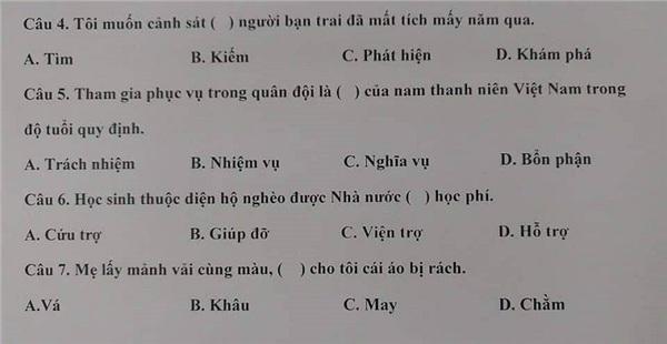Dân mạng choáng váng với đề thi năng lực tiếng Việt tại Nhật: Bạn đúng được mấy câu?-3