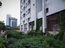 Chung cư bỏ hoang 9 năm ở đất vàng Hà Nội