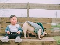 Cậu nhóc khóc ré 'ăn vạ' khi phải chụp ảnh bên bạn chó: Dễ thương quá mức quy định rồi nhé!